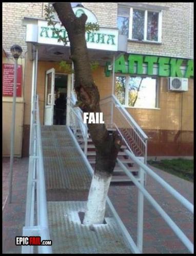 ¿O las sillas o el árbol? Ganó el árbol